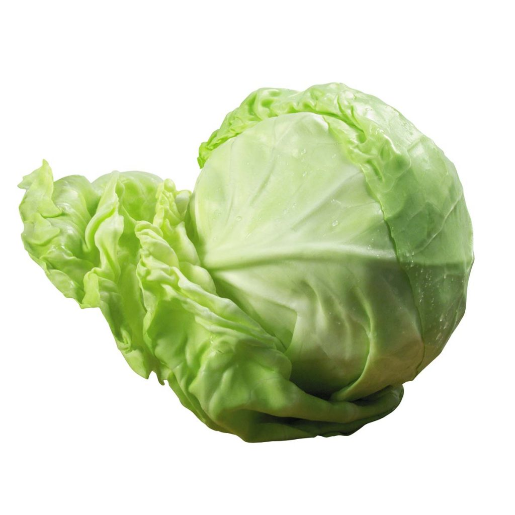 Cabbage Size 1