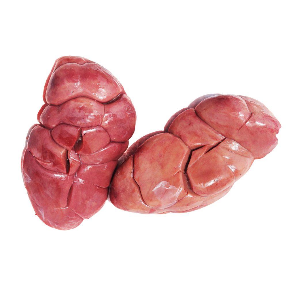 Cow Kidney