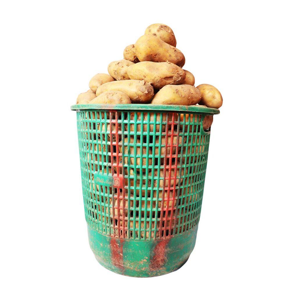 Potato Irish Size 4