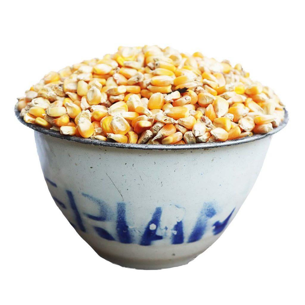 Corn Yellow Mudu