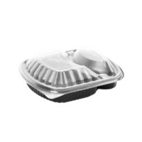 2 Compartment Wide Disposable Plastic Food Container With Lid